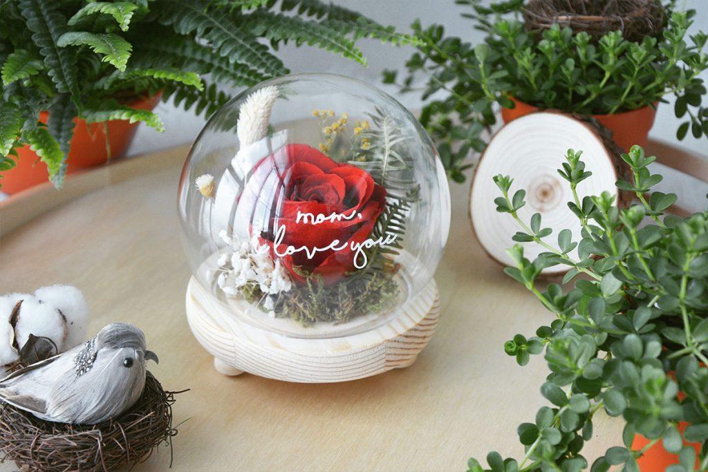 blog-sanctuary-preserved-red-rose-glass-globe