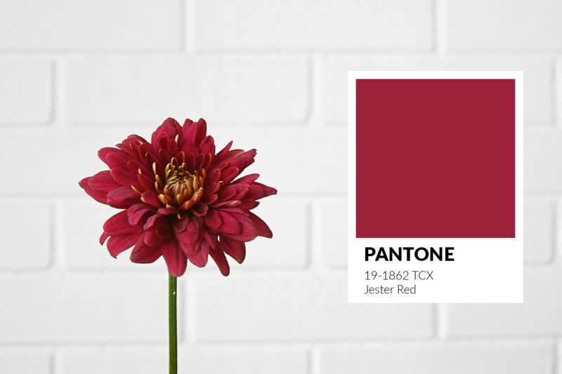 blog-0719-summertime-pantone-jesterred