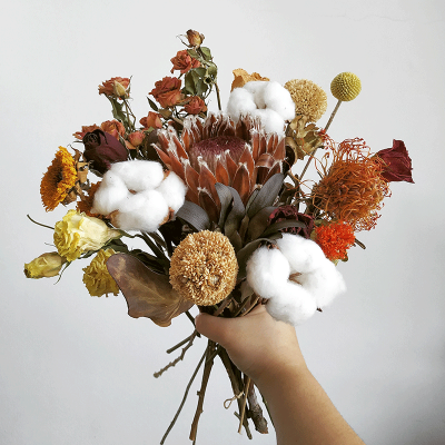 blog-10012019-dried-flower-trend-protea